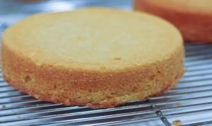 caramel cake layers